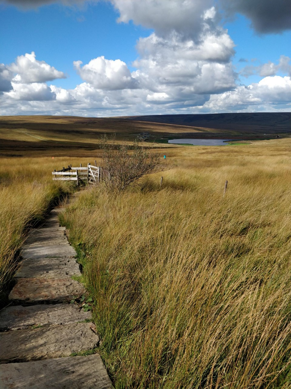Flagstone path leading off into the moorland